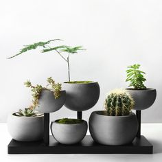 Modern Simple Balcony Small Planter Little Dog Milky Cream White Ceramic Succulent Plant Flower Pot Miniature Decoration Flowerpot