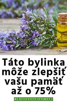 Táto bylinka môže zlepšiť vašu pamäť až o 75% Fitness, Plants, Optimism, Planters, Excercise, Health Fitness, Plant, Planting, Planets