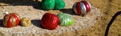 RECYCLE PUMPKINS AS ORNAMENTS FOR CHRISTMAS - Painted w/outdoor paint and then covered in Glitter!