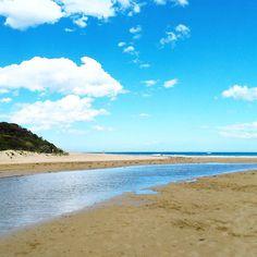Gorgeous Anglesea.  #anglesea #victoria #regionalvictoria #beach #summer #australia by peilinliew03 http://ift.tt/1KosRIg