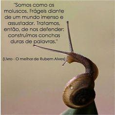 Rubem Alves...