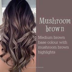 Cool Mushroom Brown Higlight Hair color ideas 2017  The post  Mushroom Brown Higlight Hair color ideas 2017…  appeared first on  Haircuts .