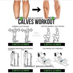 """3,407 Likes, 15 Comments - MuscleMorph® (@musclemorph_) on Instagram: """"Who DOESN'T want bigger calves ♂️Try this workout LIKE/SAVE IT if you found this useful.…"""""""