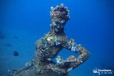 Underwater statue in Amed, Jemeluk, Bali Underwater Sculpture, Sea Sculpture, Sculptures, Snorkeling, Video Nature, Bali Baby, Voyage Bali, Bali Lombok, Underwater Pictures