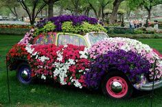 Topiary VW Bug ~ Can we put this in the yard?