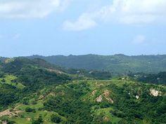Mount Hillaby Barbados