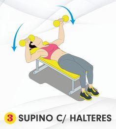 musculacao exercicio supino 116 400x1552