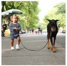 little girl, big dog
