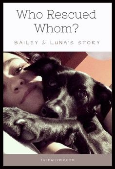 Who Rescued Whom? The story of how a fearful dog helps his rescue mom breathe.:
