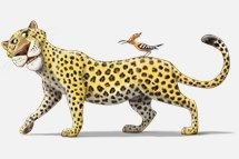 Wilderness Escape VBS 2014 Leopard Bible Memory Buddy clip art. http://www.group.com/vbs