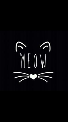 Meow cute wallpapers, dark phone wallpapers, phone backgrounds, wallpaper b Wallpaper Fofos, Cat Wallpaper, Tumblr Wallpaper, Iphone Wallpaper, Black Wallpaper, Crazy Cat Lady, Crazy Cats, Phone Backgrounds, Wallpaper Backgrounds