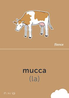 Mucca animals Ialian education flashcard