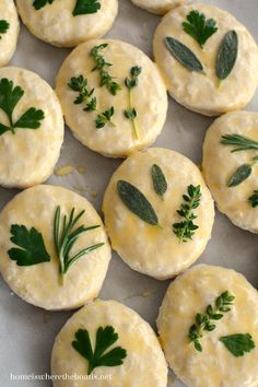 Parsley, Sage, Rosemary and Thyme: Herb-Laminated Biscuits