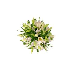 White Lily Bouquet | FREE Delivery | Arena Flowers ($48) ❤ liked on Polyvore featuring home, home decor, floral decor, flowers, plants, filler, backgrounds, green, flower home decor and white lily bouquet