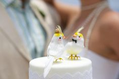Image result for cockatiel cake topper