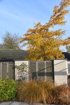Vaak horen wij klachten over bladeren die van de bomen vallen. Deze herfstkleuren maken toch ook veel goed. Of niet?. Bent u niet tevreden over uw tuin en heeft u hulp nodig?