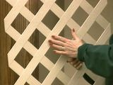 plastic one piece molded lattice easy to install Vegetable Gardening, Gardening Tips, Plastic Lattice, Lattice Wall, Diy Network, Outdoor Projects, Diy Ideas, Home Improvement, Projects To Try