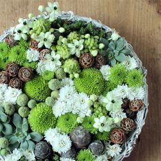 ★ネイティブフラワーパレット 幾何学的な特徴のある花や実を使った、まるで現代アートのようなアレンジメント。植物の中にひそむ美を見つめてみませんか。 6,000円(税別) #kusakanmuri