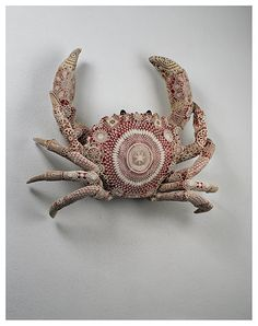 Wow that crab is way too pretty to eat!