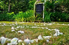 #spiralluminaries #weddingideas #beachwedding Always You, Event Styling, Weddingideas, Table Decorations, Beach, Home Decor, Homemade Home Decor, The Beach, Decoration Home