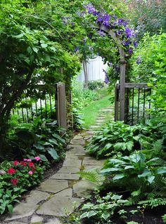 I Love This Walk Way!