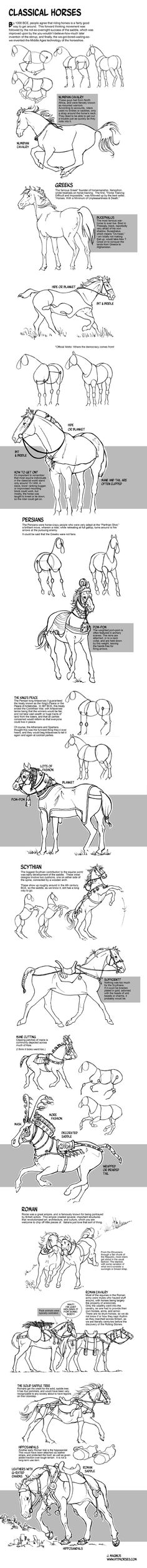 How to Draw Horses of the Classical World by sketcherjak.deviantart.com on @DeviantArt