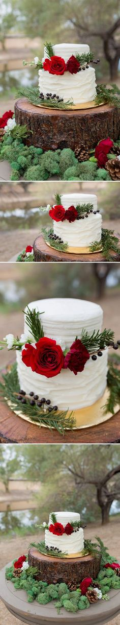 Rustic Winter Wedding Cake | A Princess Inspired Blog | Woodland Inspired Wedding | Rachel Baker Photography