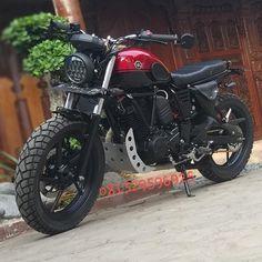Ducati Scrambler, Scrambler Motorcycle, Moto Bike, Cafe Racer Honda, Cafe Racer Bikes, Honda Tiger, Honda Nighthawk, Best Motorbike, Luxury Van