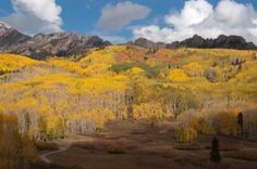 Fall hike near Crested Butte - Flickr user Jeff Foster