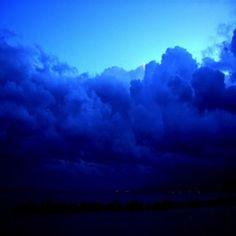 Del resto, cos'è un sogno se non un'allettante bugia: una rosa senza spine, blu. La Poesia: nel risveglio dalla realtà, il bisogno; la Bellezza tra le r