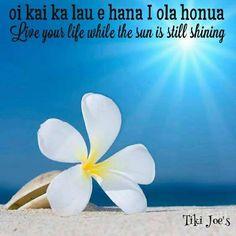 hawaiian christmas sayings Hawaiian Words And Meanings, Hawaiian Phrases, Hawaiian Sayings, Hawaii Vacation, Hawaii Travel, Hawaii Quotes, Aloha Quotes, Mahalo Hawaii, Hawaian Party