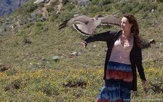 Figurino hippie, Paloma