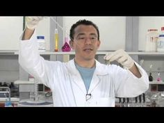 Experimentos de Química: luminol e o fenômeno da catálise