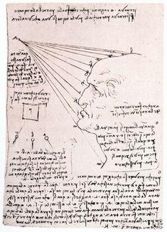 Tudy of the effect of light on a profile head - by Leonardo da Vinci
