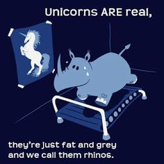 Poor little chubby unicorns