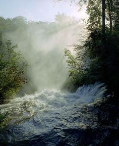 Rushing waters | tom westbrook
