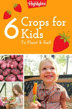 Spring has sprung—and that means it's time to get your garden ready to grow! Here are 6 yummy crops that kids can help plant—and eat, to reap the healthy benefits!