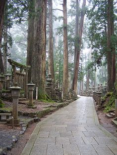 Okunoin cemetery in Mt. Koya on a misty day, Japan