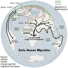 No historical record exists that tracks the migratory patterns of the earliest humans. Scientists piece together the story of human migration Map of early human migrations according to mitochondrial population genetics World History, Family History, World Geography, Human Geography, Early Humans, Human Evolution, Science, Historical Maps, Ancient Civilizations