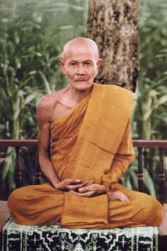 """""""In your investigation of the world, never allow the mind to desert the body. Examine its nature, see the elements that comprise it. When its true nature is seen fully and lucidly by the heart, the wonders of the world will become clear."""" - Ajahn Mun"""