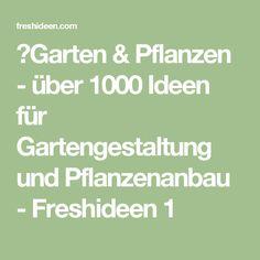 ▷Garten & Pflanzen - über 1000 Ideen für Gartengestaltung und Pflanzenanbau - Freshideen 1
