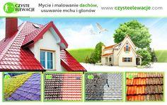 Mycie dachów, malowanie dachów, usuwanie mchu i glonów z dachu - Czyste Elewacje