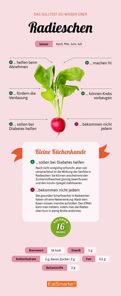 Darum sind Radieschen so gesund   eatsmarter.de #radieschen #infografik #ernährung