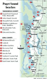 Fabulous list of different types of beaches in the Seattle area