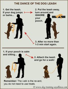 Stop dog jumping and barking to put the leash on...I'd like to try to break Hudy of this!