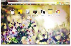 10 Beautiful Natural Scene Google Chrome Themes
