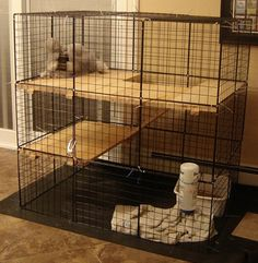 Diy Bunny Cage, Bunny Cages, Rabbit Cages, Rabbit Hutch Indoor, Indoor Rabbit Cage, Bunny Care Tips, Chinchilla Pet, Rabbit Enclosure, Ferret Cage