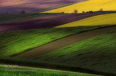 Line South Moravia by radekseverafoto