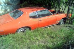 A Treed Goat: 1969 Pontiac GTO Judge - http://barnfinds.com/a-treed-goat-1969-pontiac-gto-judge/