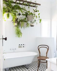 Stunning Indoor Plants Decor Ideas For Your Apartment check out these stunning indoor plant displays. Great inspiration for curating your indoor garden.check out these stunning indoor plant displays. Great inspiration for curating your indoor garden. Handmade Home Decor, Diy Home Decor, Plantas Indoor, Hanging Ladder, Plant Ladder, Diy Hanging, Bathroom Plants, Bathroom Ideas, Bathroom Inspiration